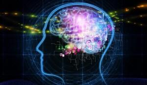 brainwaves2